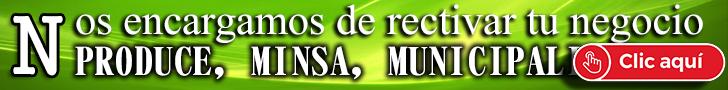 _REACTIVAR_NEGOCIO_PRODUCE_MINSA_MUNICIPALIDAD_REAPERTURA_PLAN_DE_PLAN_PARA_LA_VIGILANCIA